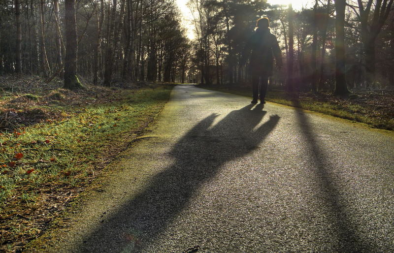 th_20120113 | RTV Drenthe - foto's | Flickr