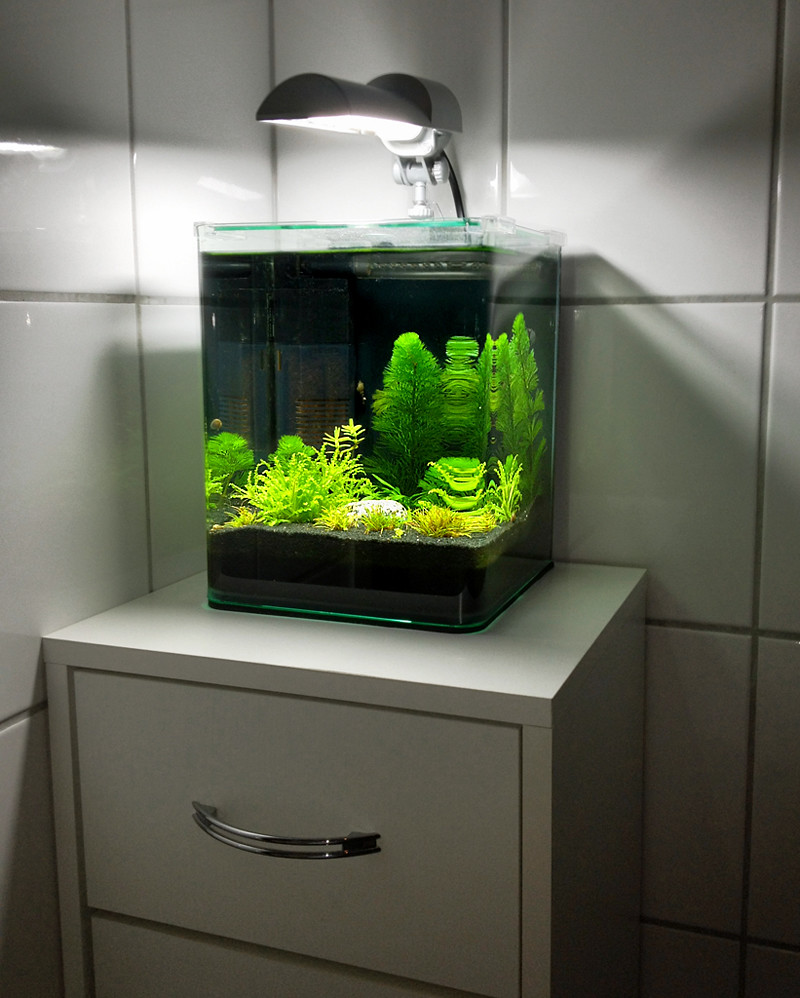 "Bathroom Dennerle Nano Cube 10L | My so called ""Klo-Cube ..."