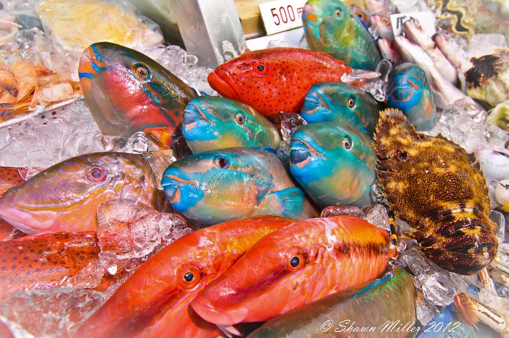 Kokusai fish market - Okinawa, Japan | Assorted reef fish- P… | Flickr