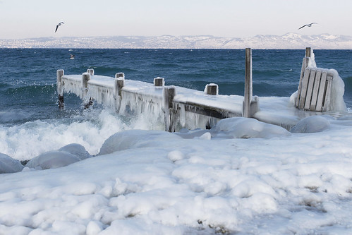 Icy Shores on Lake Geneva | by United Nations Photo