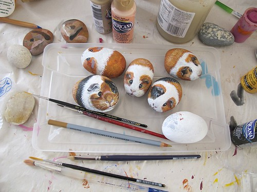 New guinea pigs painted on rocks | by Alika-Rikki