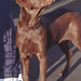 Photograph of Buddy the Dog: 12/14/1997
