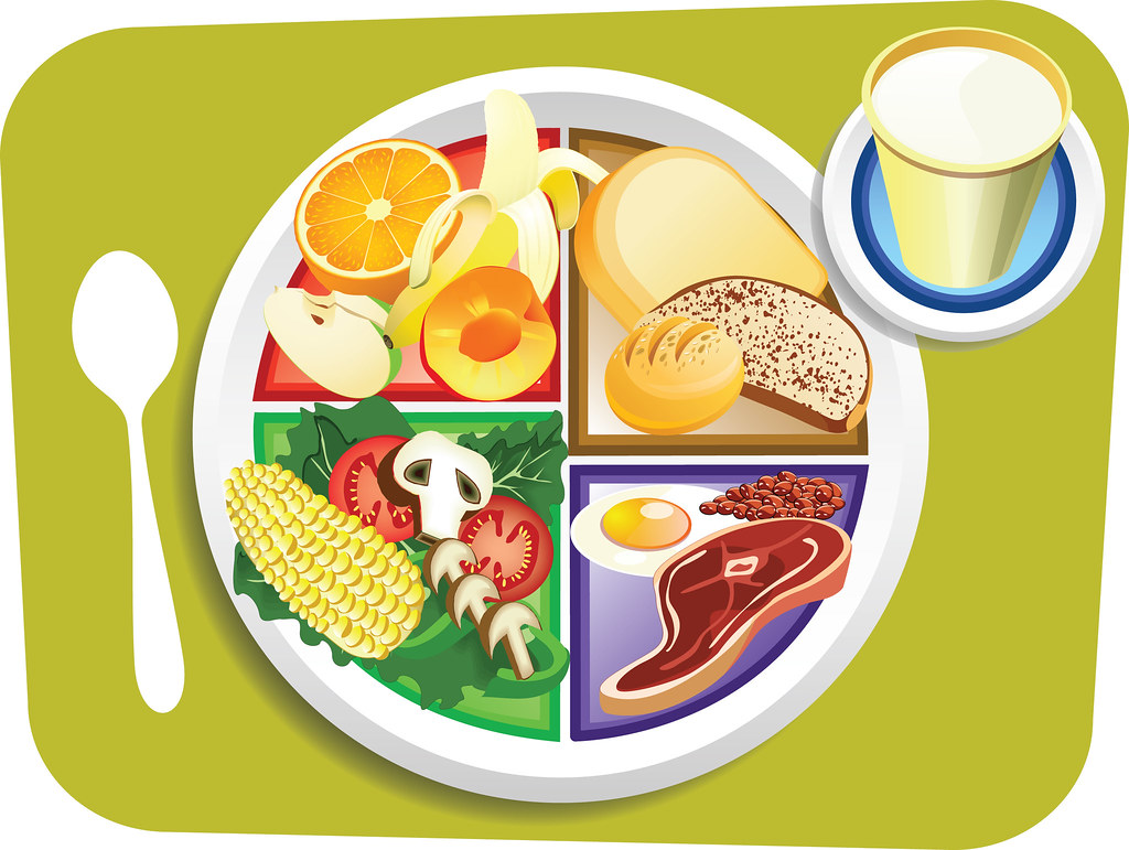 Food My Plate Breakfast Portions Vector Illustration Of