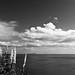 Clouds (B&W)