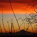 Mt Hood Sunrise from St Johns Bridge