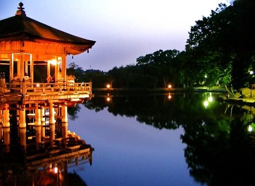 Reflections in Nara park | by absurdum14