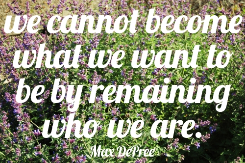 """We cannot become what we want to be by remaining who we are."" Max DePree 