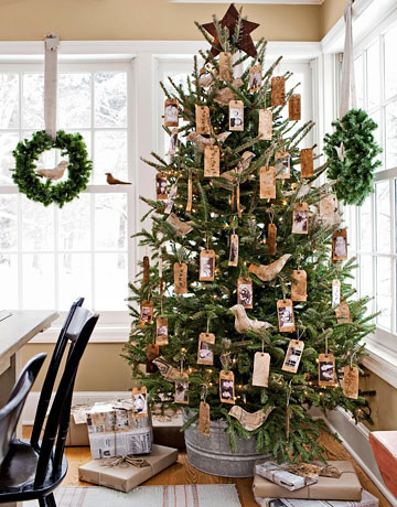 Rustic natural christmas tree flickr - Tips to care for a natural christmas tree ...