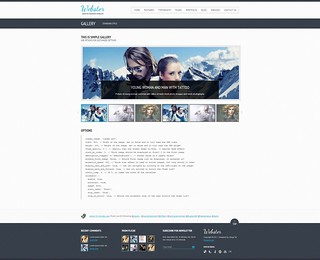 Webster - Premium HTML CSS3 Template Gallery | by ZERGE_VIOLATOR
