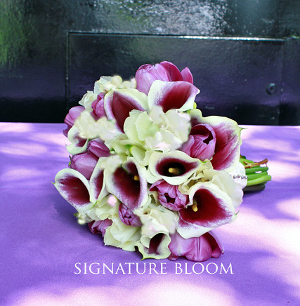 los altos wedding flowers purple amp cream calla lily bouqu