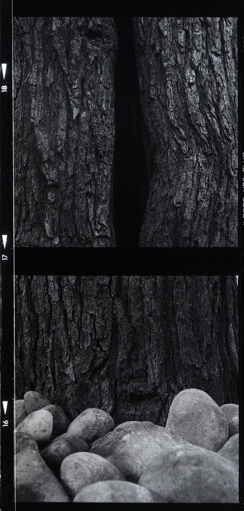 l'origine du monde courbet 1866 Le secret le mieux gardé de l'histoire de la peinture vient enfin d'être révélé : le modèle de l'origine du monde de gustave courbet (1866) serait constance quéniaux, une ancienne danseuse à l'opéra et maîtresse du commanditaire khalil-bey de découvertes en scandales, le plus célèbre entrejambe de la peinture n'en finit pas d'intriguer et de susciter les fantasmes.