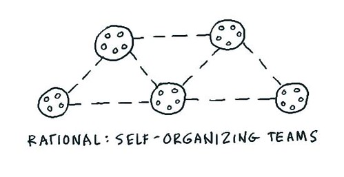 Self-organizing teams at Rational | by dgray_xplane