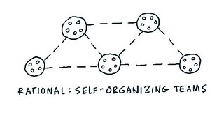 Self-organizing teams at Rational