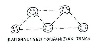 Self-organizing teams at Rational