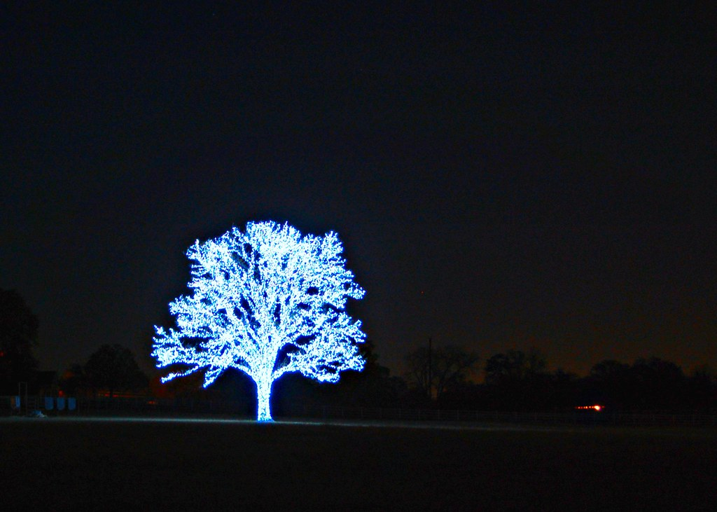 Blue Christmas Tree Lights