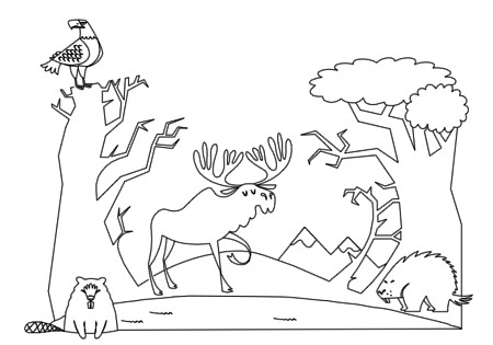 Forest Animals Coloring Book Pg 6