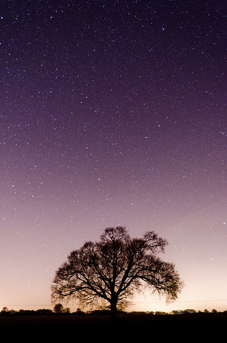 Stars over Swanmore | by Adam Bolwell