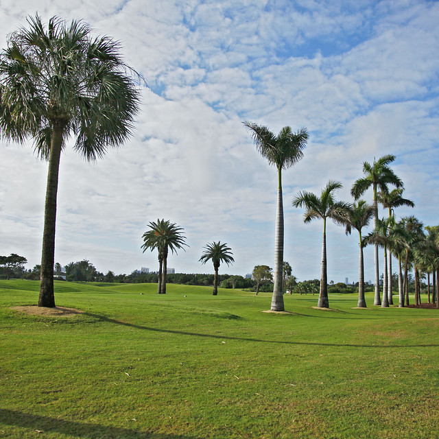 Miami Beach Golf Club Miami Beach Fl  Ef Bf Bdtats Unis