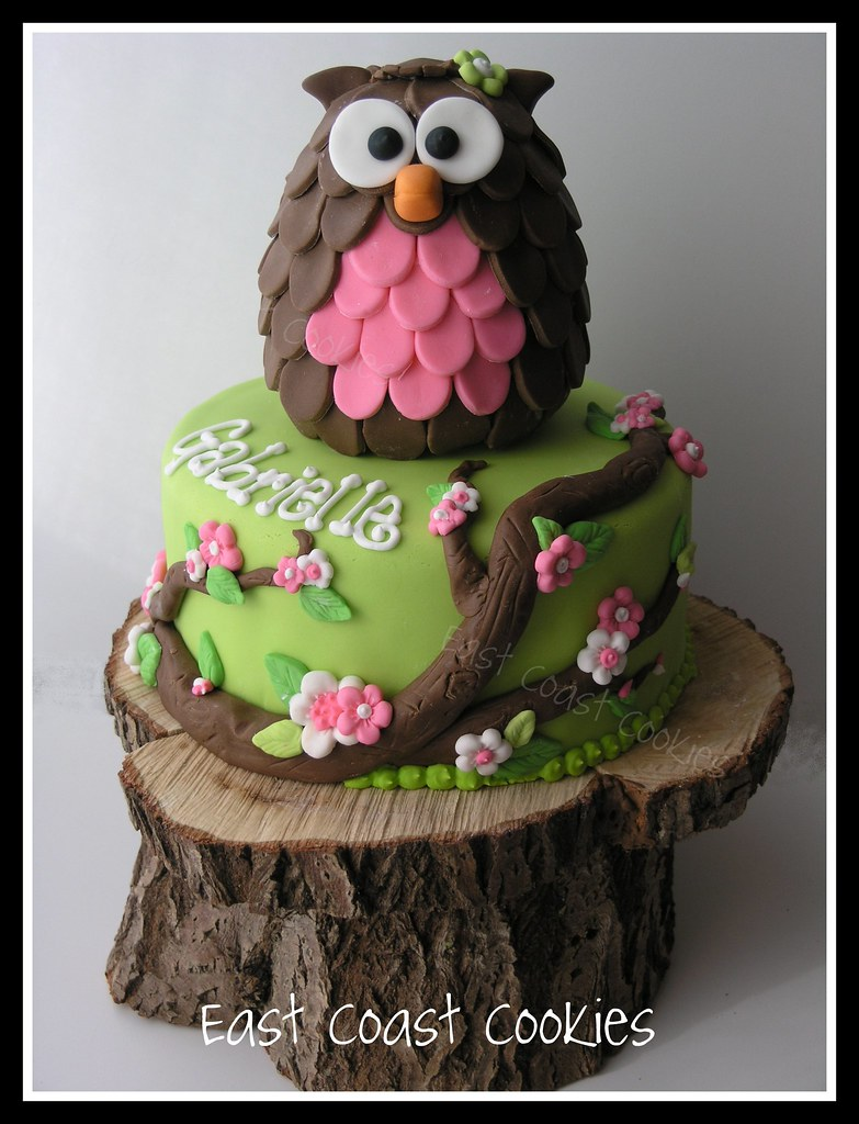 Owl Cake I M Really Happy With How It Turned Out The
