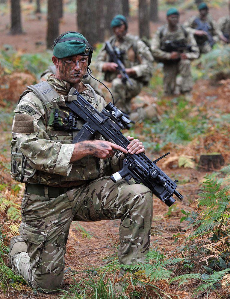 Royal Marine Commandos on Exercise in British Woodland ...