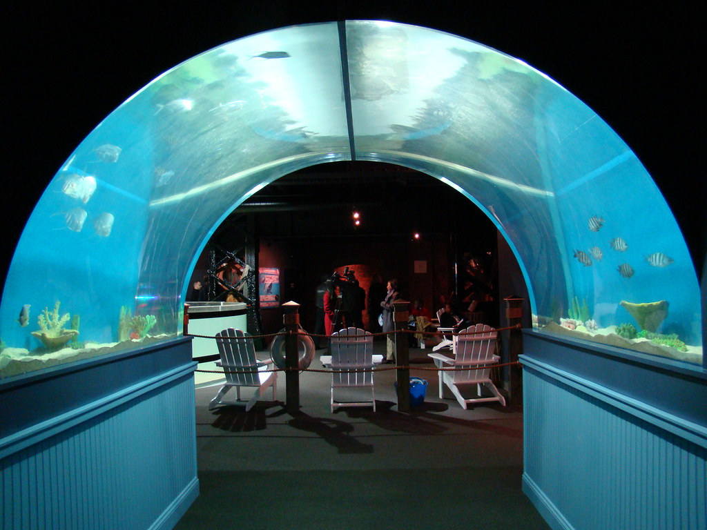 Greater Cleveland Aquarium Now Open In The Firstenergy
