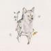 Coyote, Dogwood
