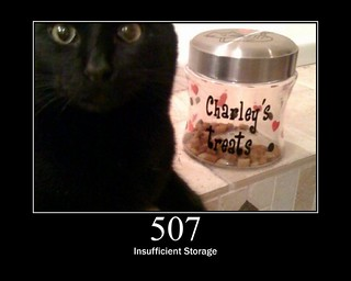 507 - Insufficient Storage | by GirlieMac