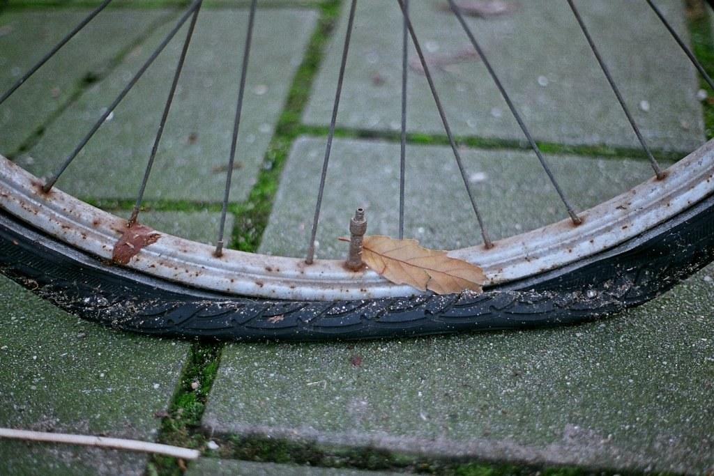Flat   Ayolt de Roos   Flickr