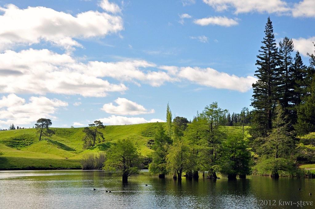 Mclaren Falls Park Mclaren Falls Park Near Tauranga