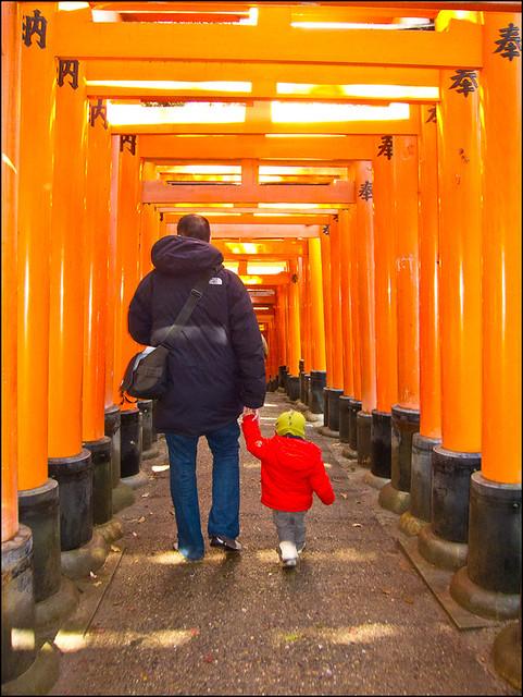 Camino de torii