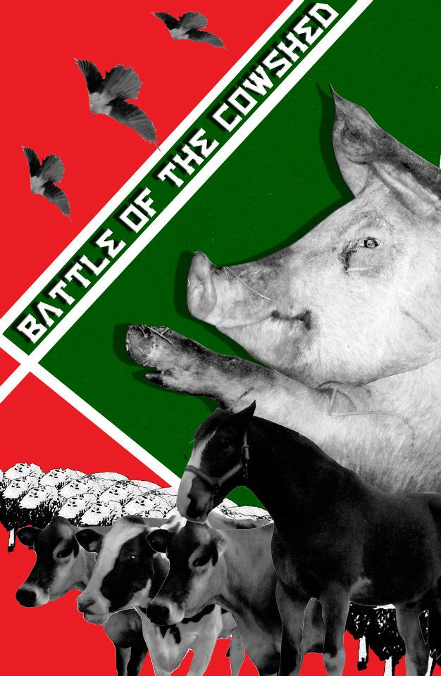 animal farm message Start studying animal farm comprehension: chapter 4 learn vocabulary, terms who are the agents of espionage for animal farm, and what is their message.