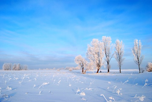 Winter in Europe | by Tobi_2008