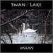 Glowing Swan / Lake Re(ar)view - IMRAN™ -- 400+ Views!
