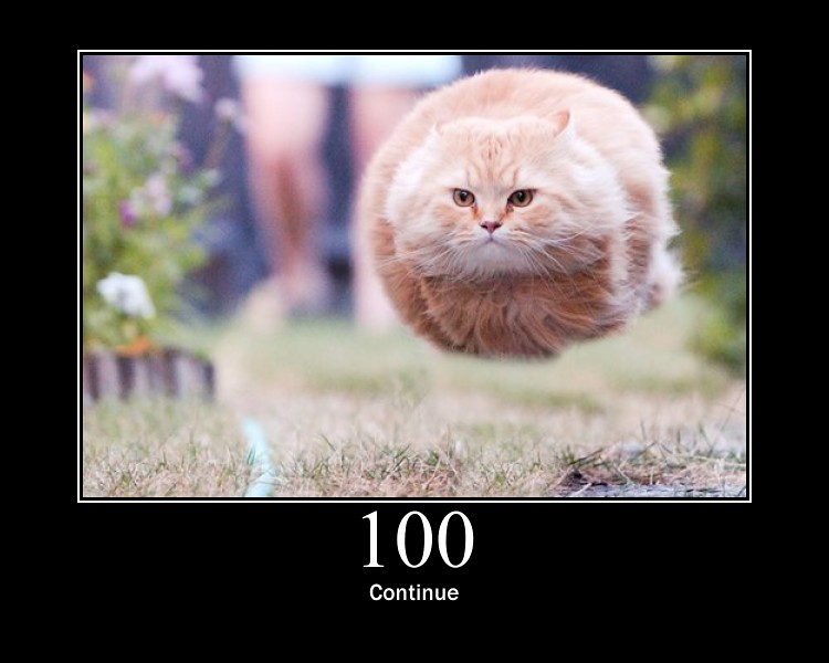 100 - Continue | This means that the server has received ...