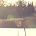 Eskilstuna_Skjulsta_20120201_#4