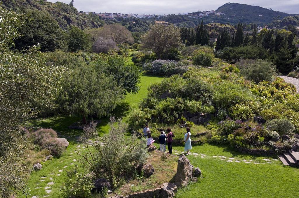 Jard n bot nico viera y clavijo zona tafira promoci n - Jardin botanico las palmas ...