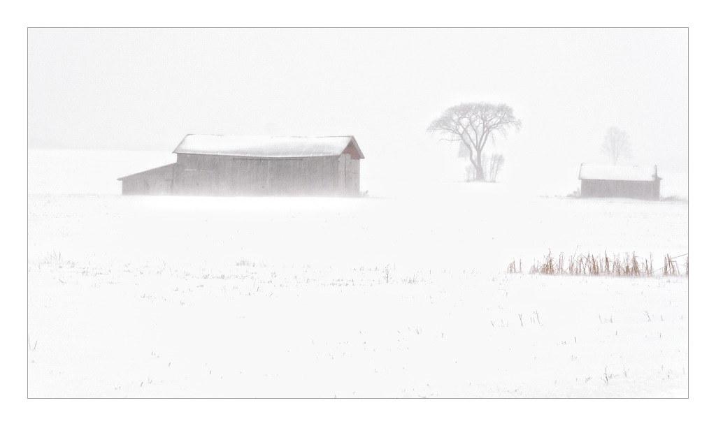 Tempête de neige ...