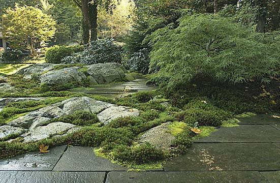Rock garden design ideas by new york plantings rock for New landscape design