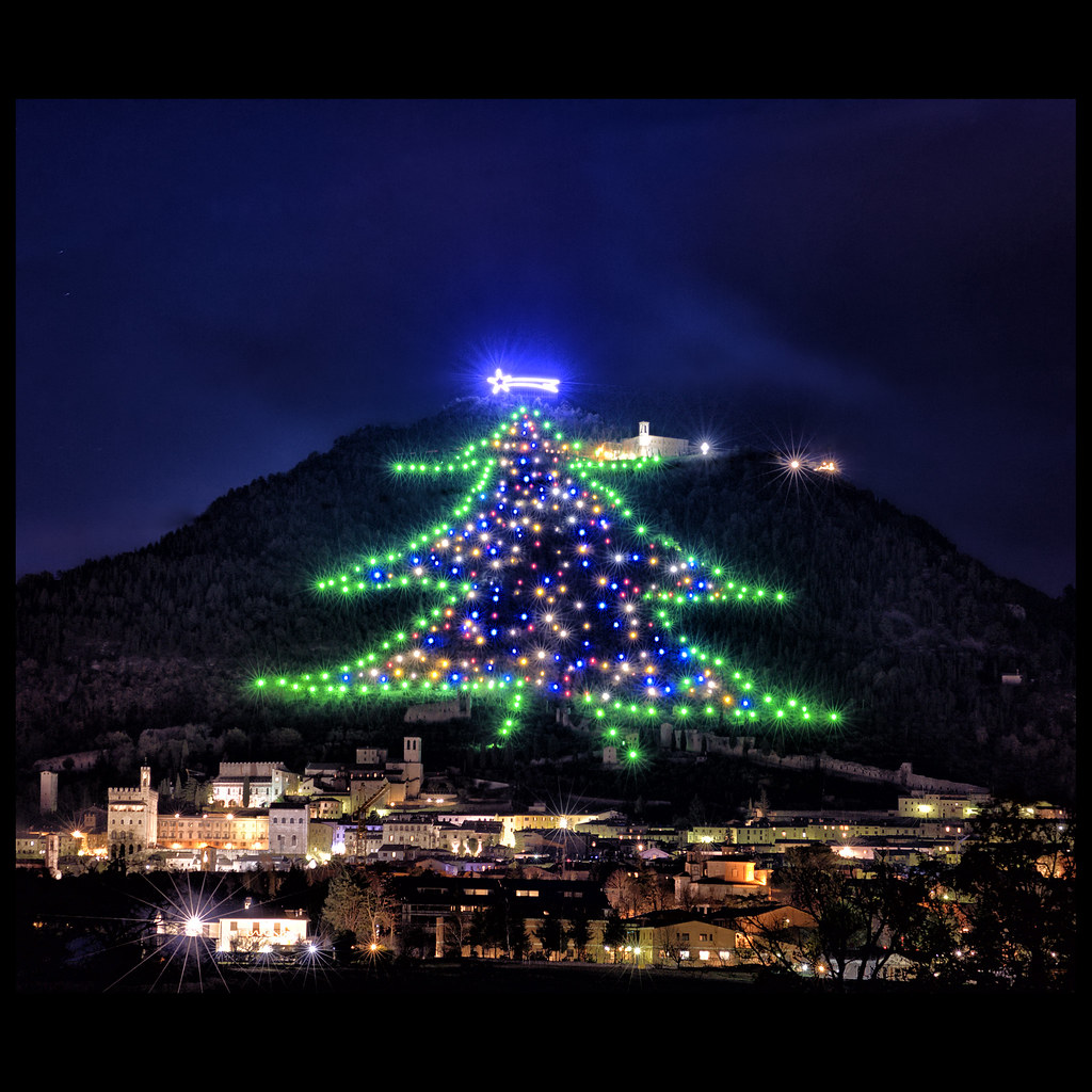 Largest Christmas Tree In The World