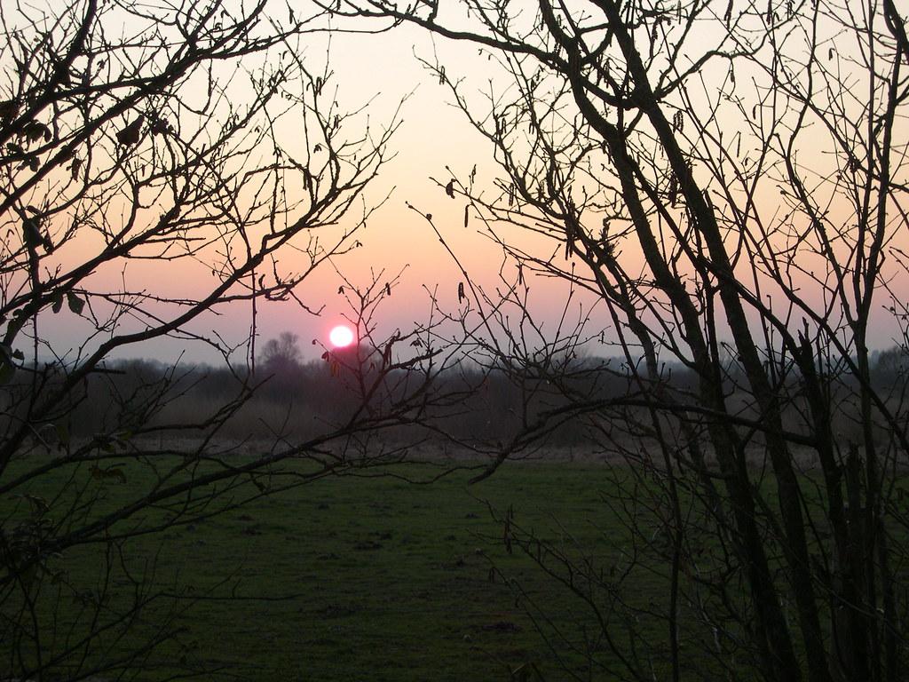 soleil couchant sur le marais de gannedel encore une flickr
