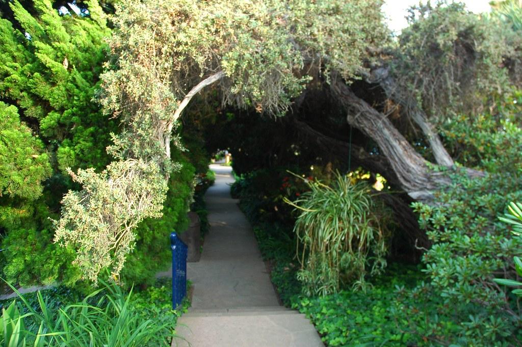 Arched Pathway Of Paramahansa Yogananda Garden Of The Gur Flickr