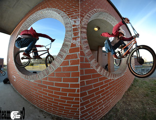 phil scharn wall hops | by mlihp