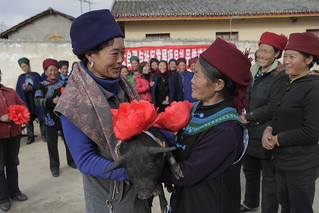 Zhaojue Project (22-0017-71) | by Heifer International