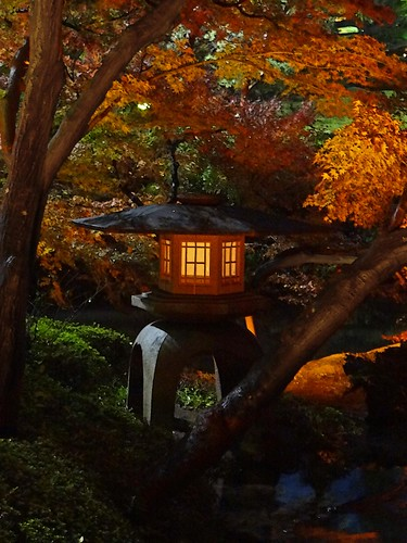 Happō-en Lantern at Dusk- Autumn | by Rekishi no Tabi