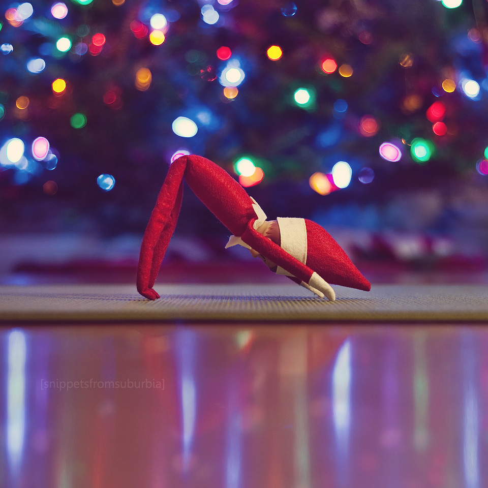 Elf on the Shelf, Day 6 | Milo does a mean downward dog ...