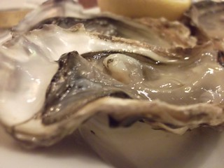 oyster | by Winesleuth