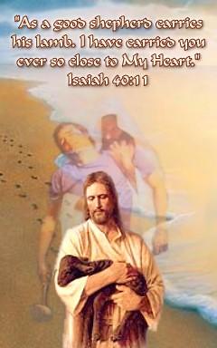 Isaiah 40 11 | dennis_matula | Flickr