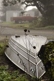 Tin Boat & Red Ford blog | by binah06