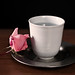 cup of water and a rose on a silver plate.