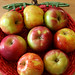 normandy apple tart 1